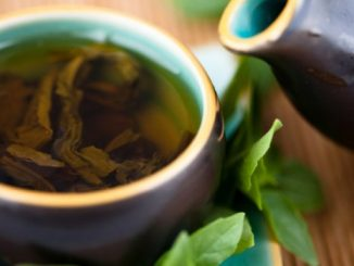 Dieta del té de yerba mate o mate cocido para adelgazar