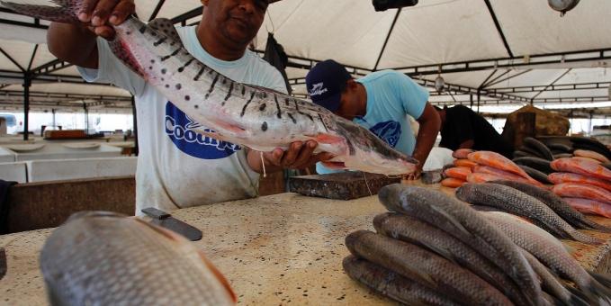 pescado de rio
