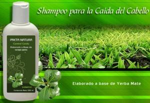 Shampoo para la caída del cabello elaborado con yerba mate