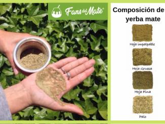 El mito de que el polvillo en la yerba mate hace mal a la salud
